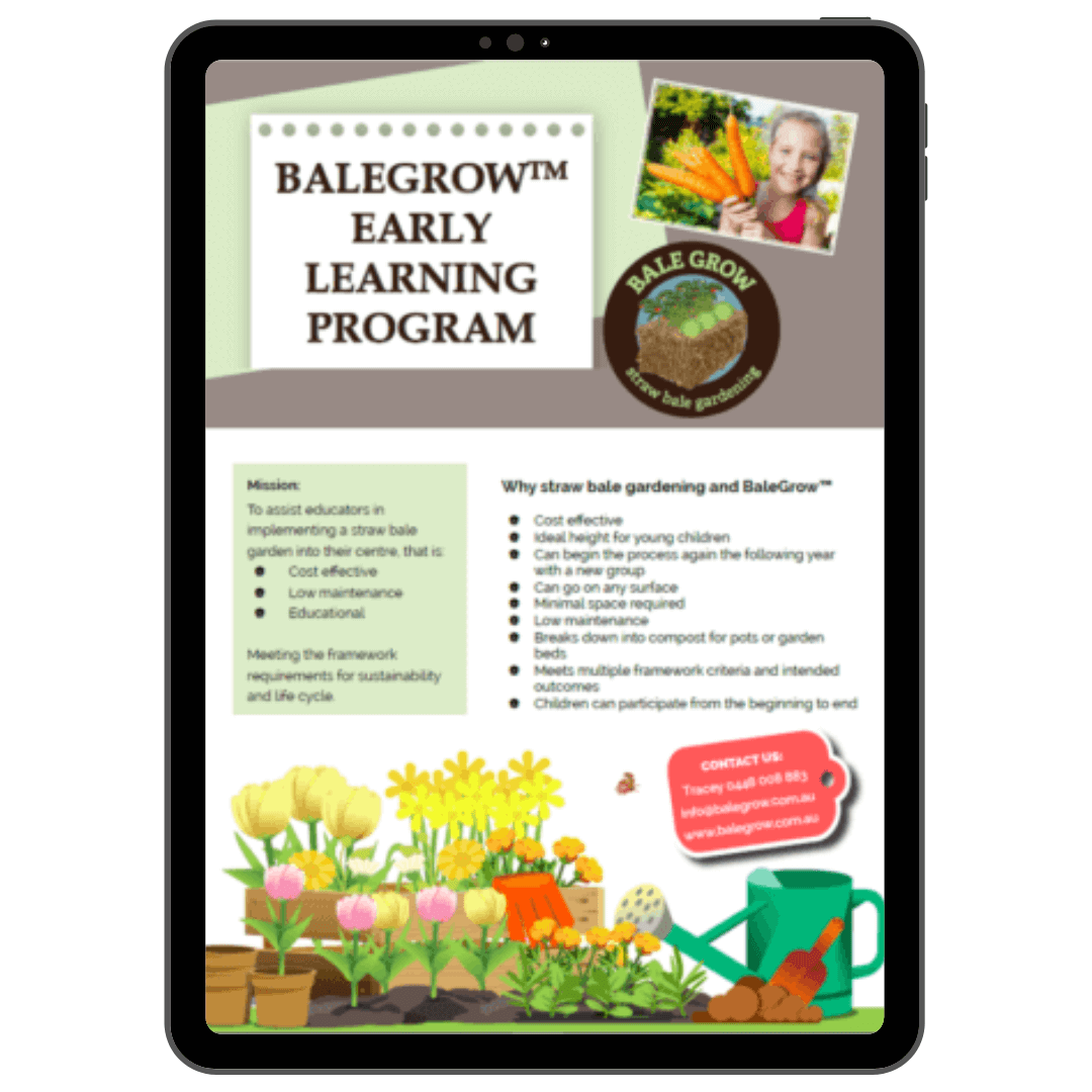 Balegrow Early Learning Program